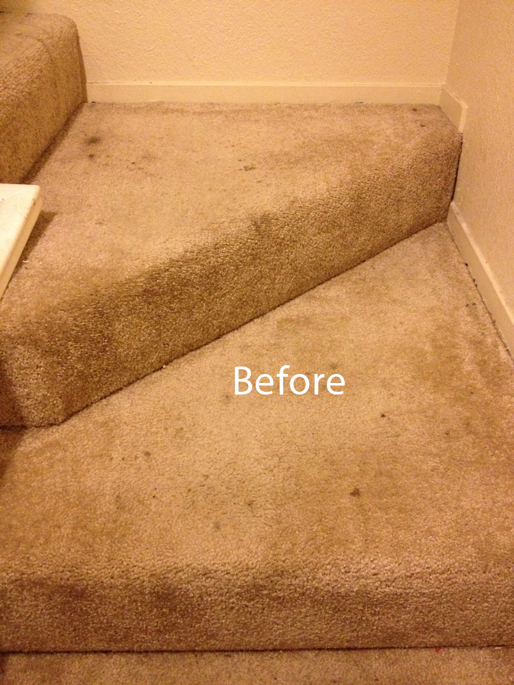 How To Pick Carpet For Stairs Home Decor 2018