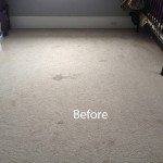 Cranberry Juice Stain Removal San Francisco-A