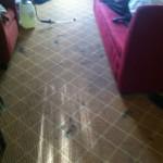 San Francisco-Carpet-Clean-before