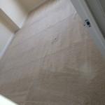 San Francisco-Carpet-Clean-room