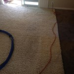 San Francisco-Traffic-Area-carpet-cleaners
