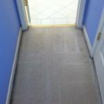 San Francisco-Vomit-2-after-carpet