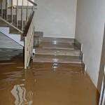 San Franciscoflood-in-house