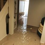 San Franciscohome-flood-damage-repair
